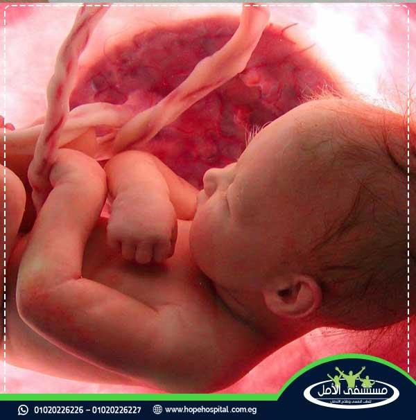 اثار الترامادول على الجسم والجنين
